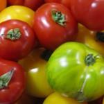 Beautiful Cowichan Valley heirloom tomatoes