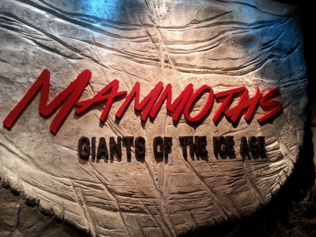 Mammoths sign June 2016