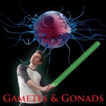 Gametes and Gonads – A Fundraiser for Story Theatre, September 17th